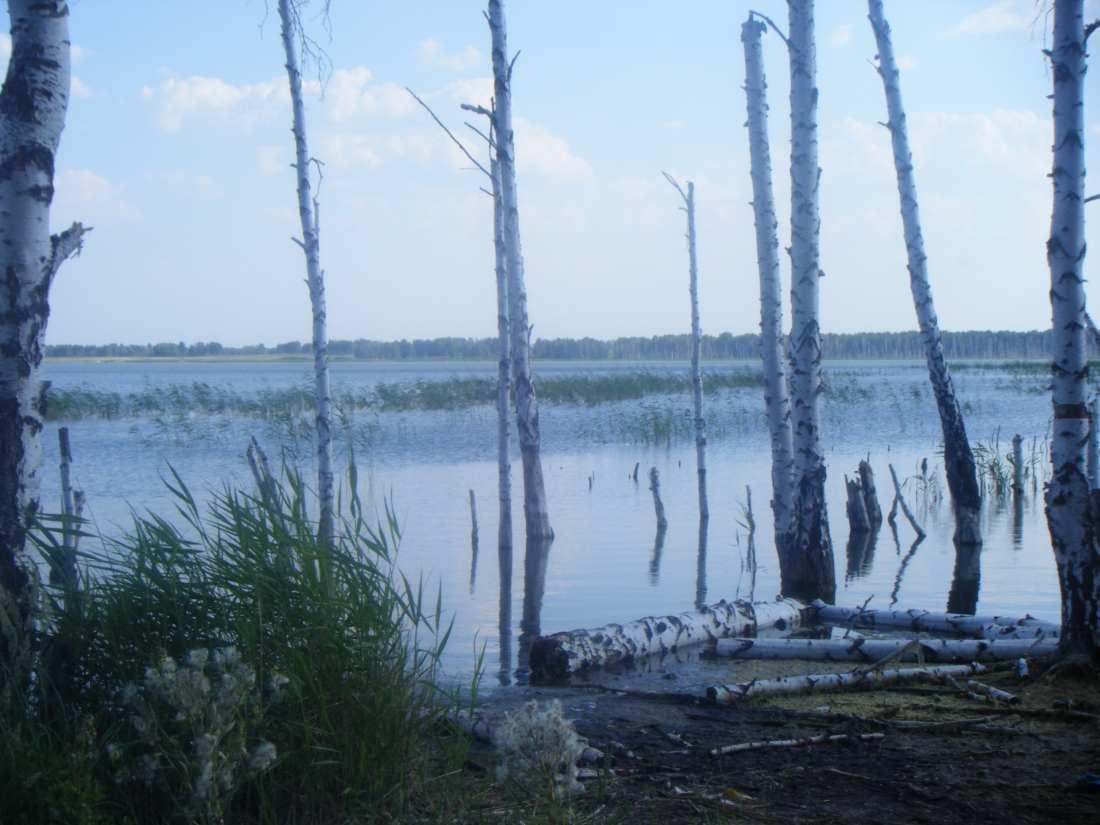 Ru рыбалка в челябинской области