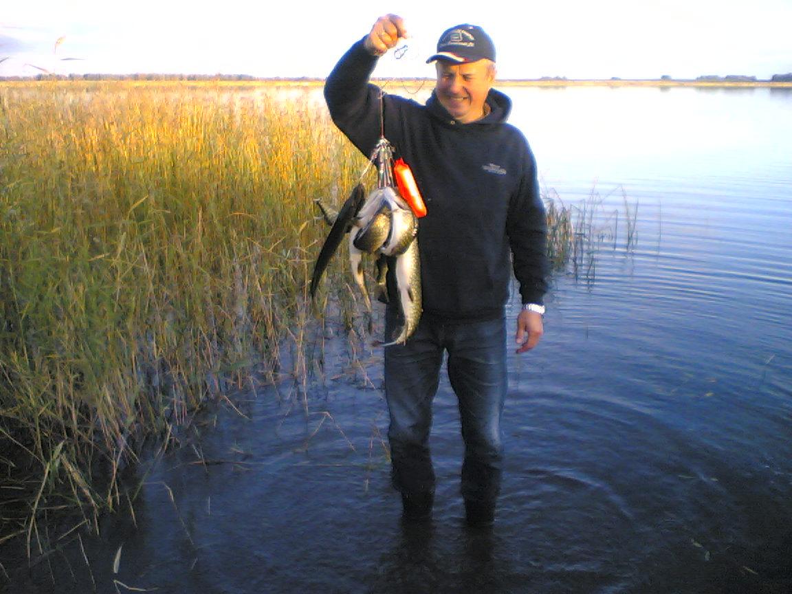 где сегодня клюет рыба в херсоне